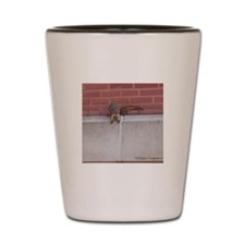 Hanging Out Squirrel Shot Glass