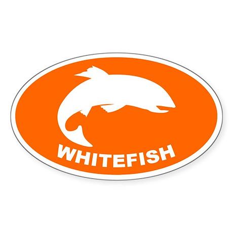 Whitefish Sticker (Oval)