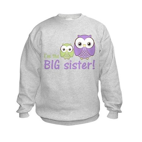 Big Sister Owl Purple/Green Kids Sweatshirt