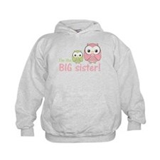 Big Sister Owl Pink/Green Hoodie