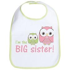 Big Sister Owl Pink/Green Bib