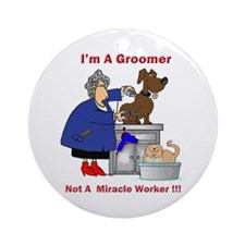 Not a miracle worker Ornament (Round)