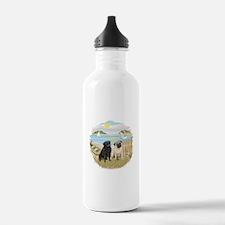 RowBoat-2 Pugs (B+F) Water Bottle