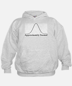 Approximately Normal Statistics Hoodie