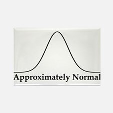 Approximately Normal Statistics Rectangle Magnet