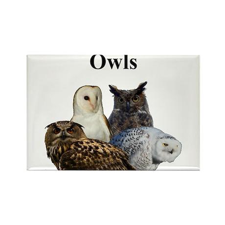 Owls Rectangle Magnet (10 pack)