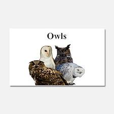 Owls Car Magnet 20 x 12