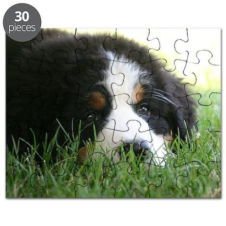Bernese Puppy Puzzle