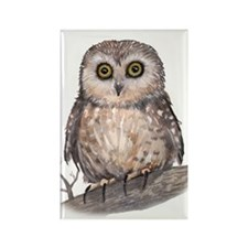 Wide Eyed Owl Rectangle Magnet