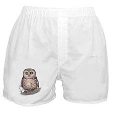 Wide Eyed Owl Boxer Shorts
