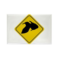 Goldfish Crossing Sign Rectangle Magnet