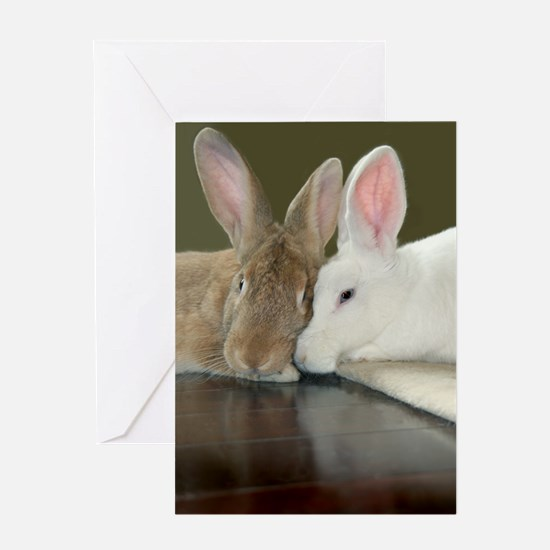 Bunny Valentine's Day Card Greeting Card