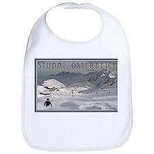 Stuabi Glacier Bib