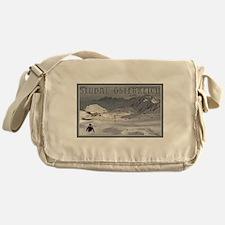 Stuabi Glacier Messenger Bag