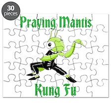 Kung-Fu Praying Mantis Puzzle