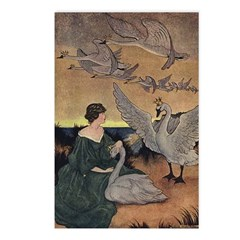 Winter's Wild Swans Postcards (Package of 8)
