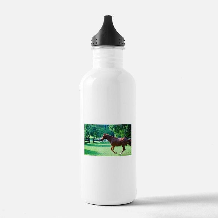 Spring Gallop Water Bottle