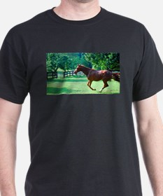 Spring Gallop T-Shirt