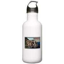 Manarola Town Water Bottle