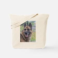 Funny Brix Tote Bag