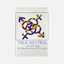 True Neutral Rectangle Magnet