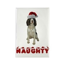 Naughty Springer Spaniel Rectangle Magnet