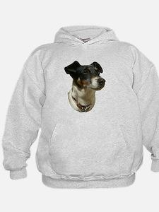 Jack Russell Dog Hoodie