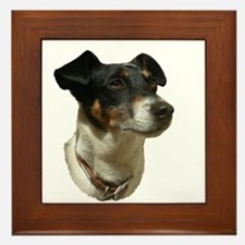 Jack Russell Dog Framed Tile