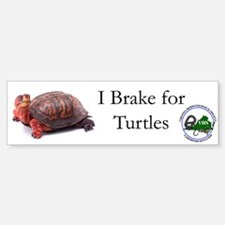 Box Turtle Bumper Bumper Bumper Sticker