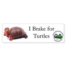 Box Turtle Bumper Bumper Sticker