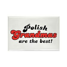 Polish Grandmas Rectangle Magnet