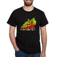 Mens shorts T-Shirt