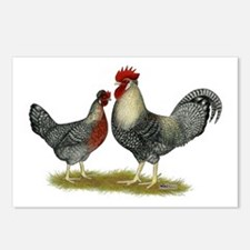 Legbar Cream Fowl Postcards (Package of 8)