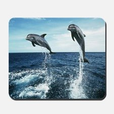 Dolphins In The Ocean Mousepad
