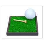 Golf Ball Tee Laying on Grass Small Poster