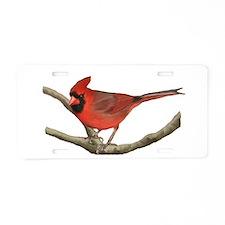 Unique Birdwatching Aluminum License Plate