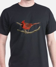 Unique Cardinal bird T-Shirt