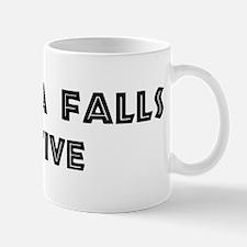 Wichita Falls Native Mug