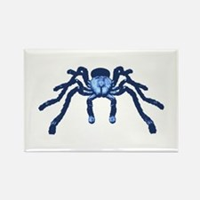 Cobalt Blue Taranchula Rectangle Magnet