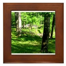 Sparkman Park Hole 11 Framed Tile