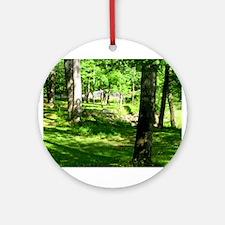 Sparkman Park Hole 11 Ornament (Round)