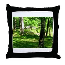 Sparkman Park Hole 11 Throw Pillow