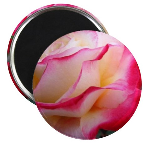 """Double Delight 2.25"""" Magnet (100 pack)"""