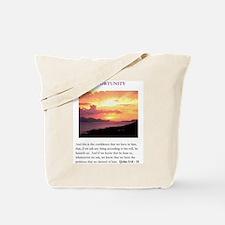 105090 Tote Bag