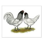 Owl Beard Chickens Small Poster