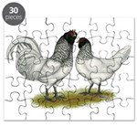Owl Beard Chickens Puzzle