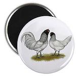 "Owl Beard Chickens 2.25"" Magnet (100 pack)"