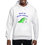 Rawr to Brain Cancer! Hooded Sweatshirt