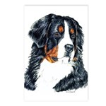 Bernese Mountain Dog Head Postcards(8)