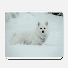 American Eskimo Dog Snow Day Mousepad